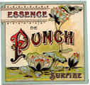 Essence de Punch